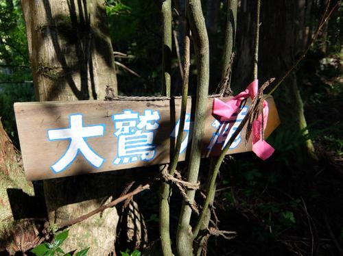 編集DSCF2703.JPG
